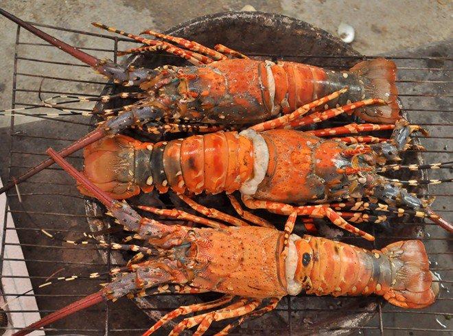 dao-binh-ba--sonanhdaobinhba.com-7